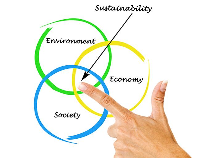 bæredygtig økonomi