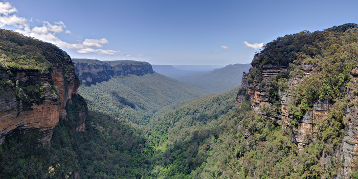 Isoprenoids (blue haze) over Blue Mountains, Australia (Diliff / CC BY-SA (https://creativecommons.org/licenses/by-sa/3.0)