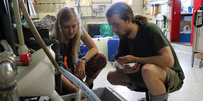 Kristina Enders and Robin Lenz filtering seawater for microplastic, Sargasso Cruise 2014. Photo: Line Reeh.