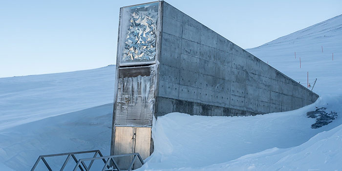 Global Seed Vault. Photo: Line Reeh