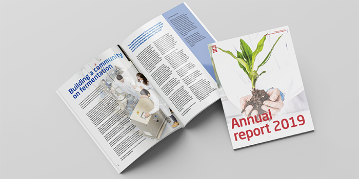 Annual report 2019 cover and article example.
