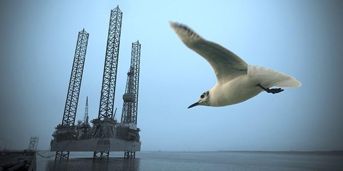 Petroleum Engineering (MSc) - DTU